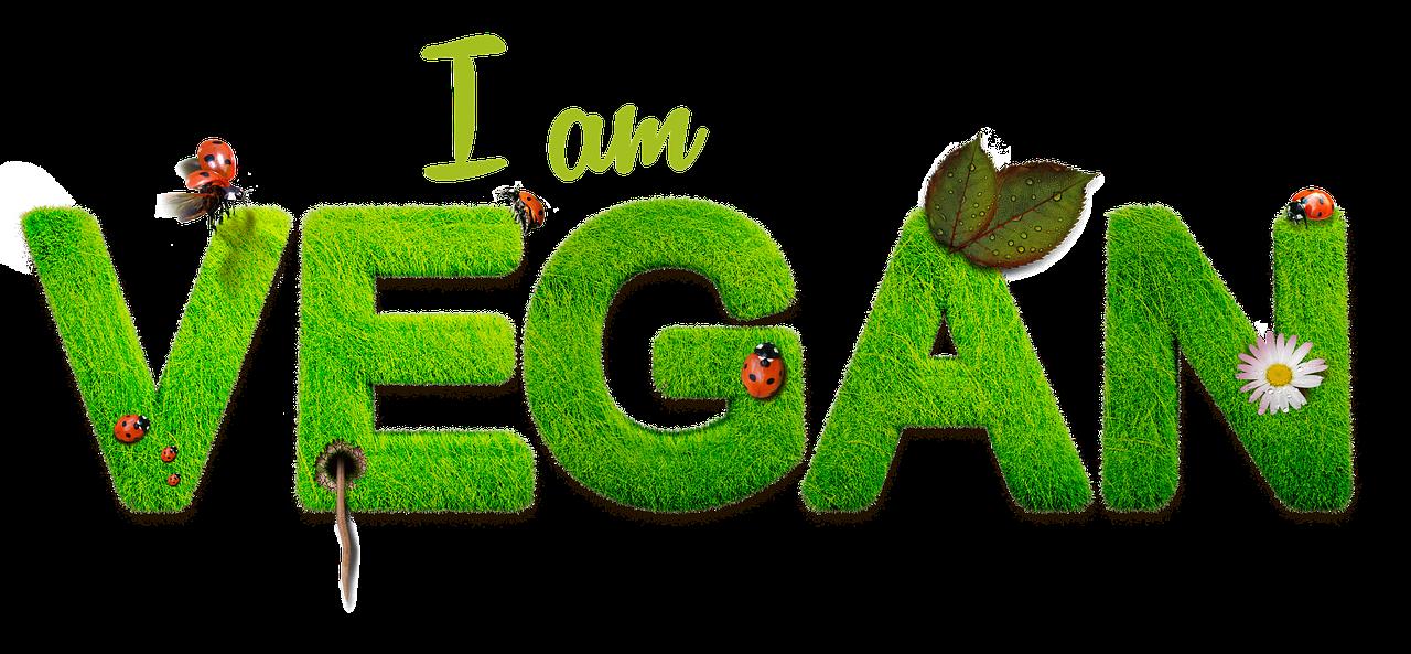 Ilustrační fotografie vegan
