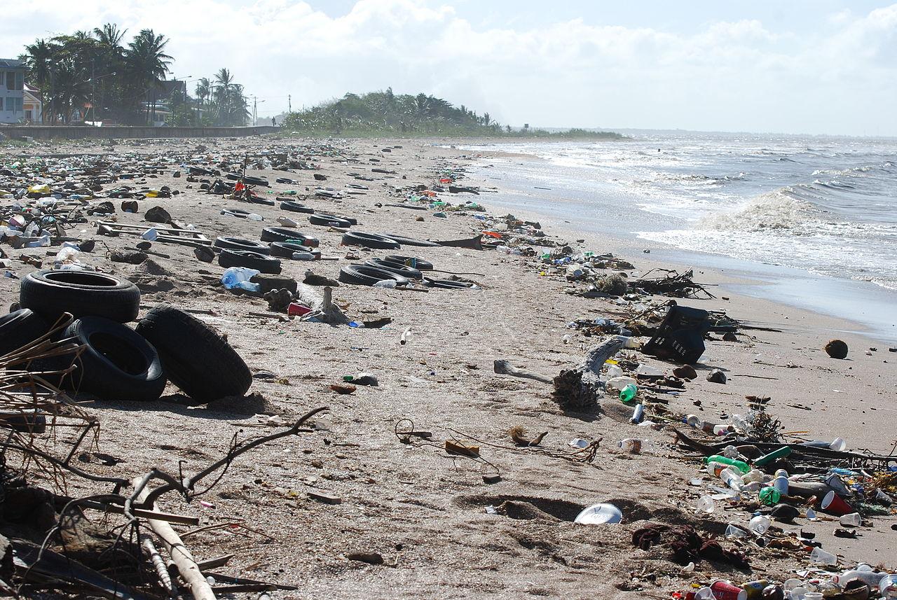 Plastová krize - odpadky